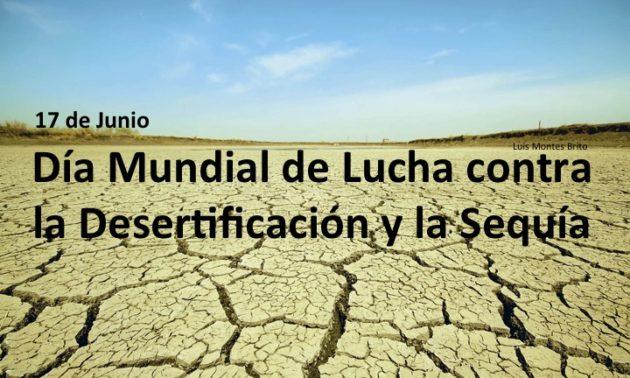 #17Junio: Día Mundial de la lucha contra la Desertificación