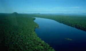 El río Orinoco crece 14 metros sobre el nivel del mar  en Anzoátegui