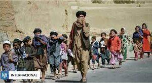 «Migrar o morir de hambre»: más de la mitad de los afganos están al borde de una crisis alimentaria